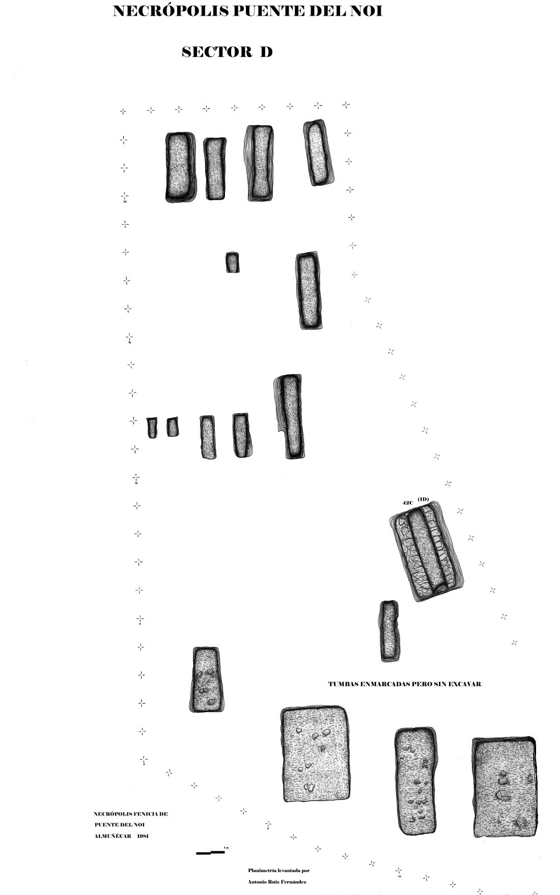 Puente del Noi 1PLANOS SECTOR D copia