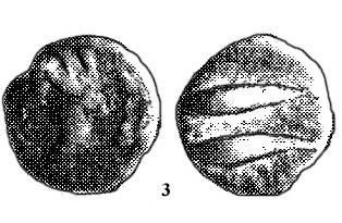 3 PALANCO BURGOS (2) copia