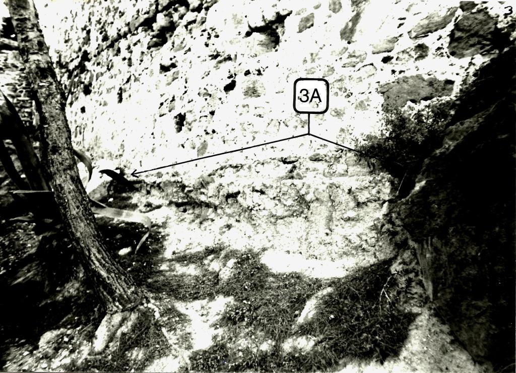 La imagen tiene un atributo ALT vacío; su nombre de archivo es scan-sector-a3n.psd_.psd_.jpg